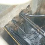 Tepco investigates new Fukushima leak